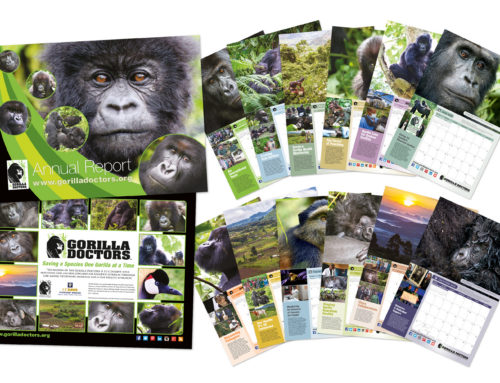 Gorilla Doctors Calendar and Annual Review