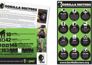 Gorilla Doctors Raising Awareness