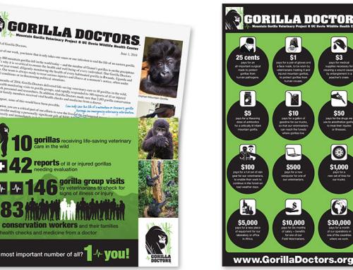 Gorilla Doctors Awareness
